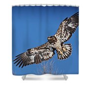 Blue Sky Flight Shower Curtain