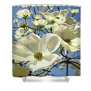 Blue Sky Spring White Dogwood Flowers Art Prints Shower Curtain