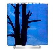 Blue Sky Tree Shower Curtain