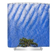 Blue Sky White Clouds Green Trees Shower Curtain