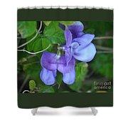 Blue Snail Vine Twins Shower Curtain