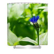 Blue Spot In The Green World - Featured 3 Shower Curtain