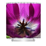 Blue Star Tulip Design 2 Shower Curtain