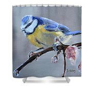 Blue Tit And Blossoms Shower Curtain