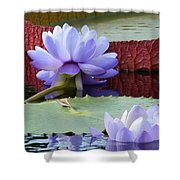 Blue Tranquillity Shower Curtain
