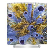 Blue Tube Group Shower Curtain