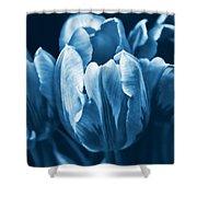 Blue Tulip Flowers Shower Curtain