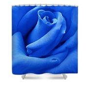 Blue Velvet Rose Flower Shower Curtain