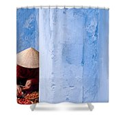 Blue Wall Hawker 01 Shower Curtain