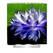 Blue Water Lily Reflection Shower Curtain