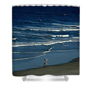 Blue Wave Walking Shower Curtain