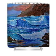 Blue Waves Hawaii Shower Curtain