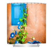 Blue Window - Painted Shower Curtain