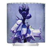 Bluebell Shower Curtain