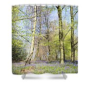 Bluebell Time In England Shower Curtain