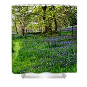 Bluebell Way Shower Curtain