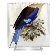 Bluebellied Roller Shower Curtain