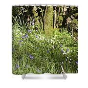 Bluebells And Greater Stitchwort Spring  Boot Eskdale Cumbria England Shower Curtain