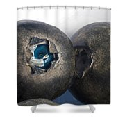 blueberries V Shower Curtain
