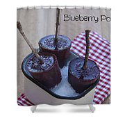 Blueberry Popsicles Shower Curtain