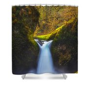 Blueberry Punch Shower Curtain