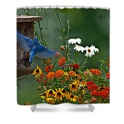 Bluebird And Colorful Flowers Shower Curtain
