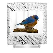 Bluebird In Prairie Frame Shower Curtain