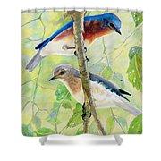 Bluebird Pair Shower Curtain