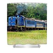 Bluebird Train Shower Curtain