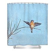 Bluebird Wings - Minimalism Shower Curtain