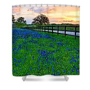 Bluebonnet Fields Forever Brenham Texas Shower Curtain