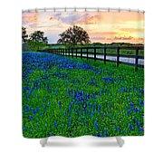 Bluebonnet Fields Forever Brenham Texas Shower Curtain