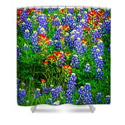 Bluebonnet Patch Shower Curtain by Inge Johnsson