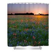 Bluebonnet Sunset Shower Curtain