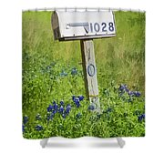 Bluebonnets And Mailbox Shower Curtain