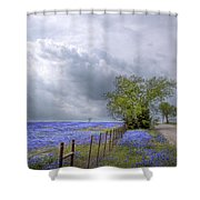 Bluebonnets And Spring Rain Shower Curtain