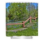 Bluebonnets And Stairs Shower Curtain