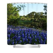 Bluebonnets By The Pond Shower Curtain