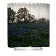 Bluebonnets On A Hazy Morning Shower Curtain