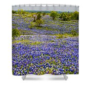 Bluebonnets Over Hill And Dale Shower Curtain