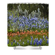 Bluebonnets Paintbrush And Prickly Pear Shower Curtain