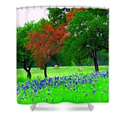 Bluebonnets With Red Flourish  Shower Curtain