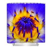 Blue Brilliance Shower Curtain