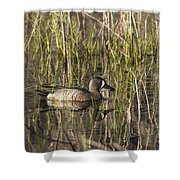 Bluewing Teal Shower Curtain