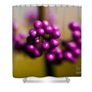 Blur Berries Shower Curtain