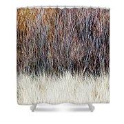 Blurred Brown Winter Woodland Background Shower Curtain