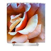 Blush Pink Palm Springs Shower Curtain