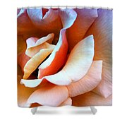 Blush Pink Palm Springs Shower Curtain