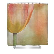 Blushing Spring Shower Curtain
