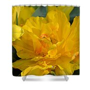 Blushing Yellow Shower Curtain